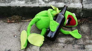 Drunk Essay Fiesta Frog